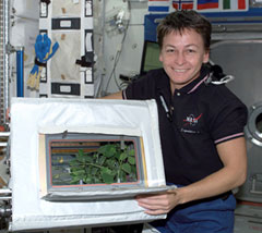 Peggy Whitson on space station