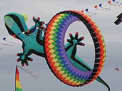 Kites like this one will be flying over Grinnell.