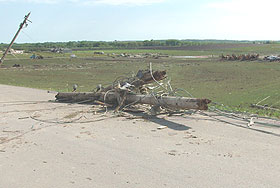 Downed power poles and electric lines are some of the debris left over from the tornado that hit Parkersburg.