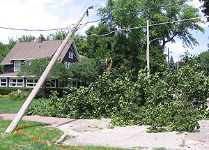 Trees blown down in Des Moines.