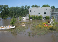 Floodwaters surround Great Ape Trust buildings in June.