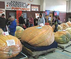 Anamosa Pumpkinfest