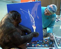 Ape Art