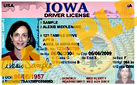 Sample Iowa driver's license