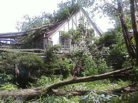 Fallen trees surround a Cedar Falls house.