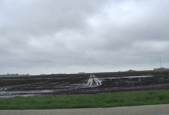 Water in field during rain today.