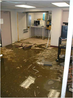 Flooded site where Grant Wood AEA servers used to reside.
