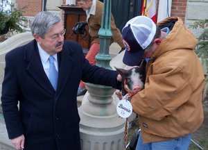 Governor Branstad pets Bonnie the pig after issuing her a pardon.
