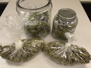 Marijuana seized in Storm Lake.