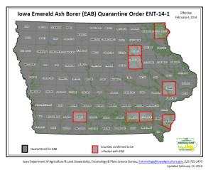 Ash-borer-map
