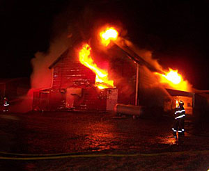 Firefighters say 350 pigs died in this barn fire near Oyens.