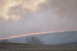 This grass fire burned in Shelby County Wedneday.