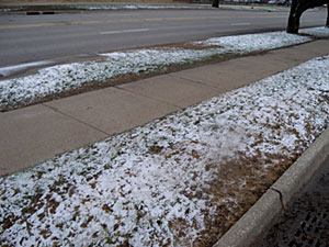 Overnight snow left green grass flocked in white in many areas of the state.