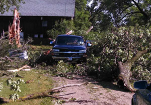More tree damage at a home near Westgate in Fayette County.