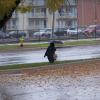 Walking in the rain in Des Moines.