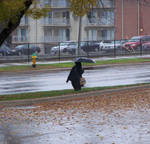 Rain in Des Moines knocks down leaves and brings out umbrellas.