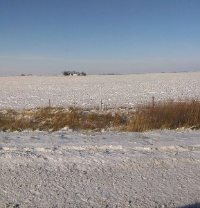 Frozen fields prevent applicators from injecting manure into the soil.