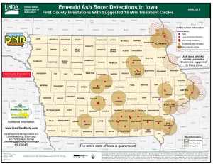 emerald-ash-borer-map