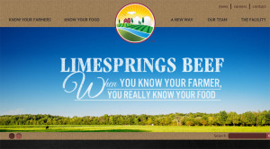 The Lime Springs Beef website.