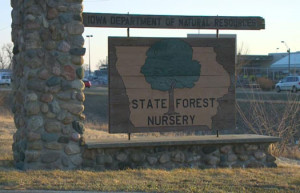 state_forest_nursery