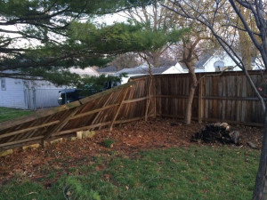 Storm damage in Bettendorf.