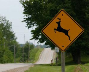 deer-xing-sign