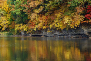 Fall color along the Iowa River near Coralville.