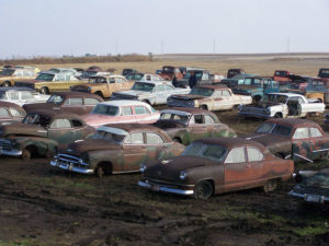 Cars waiting for auction.