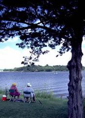 Algae blooms bring toxins to sw iowa lake banishing swimmers for Green valley lake fishing