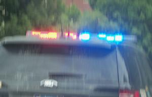 Quad Cities police break up dog fighting ring - Radio Iowa
